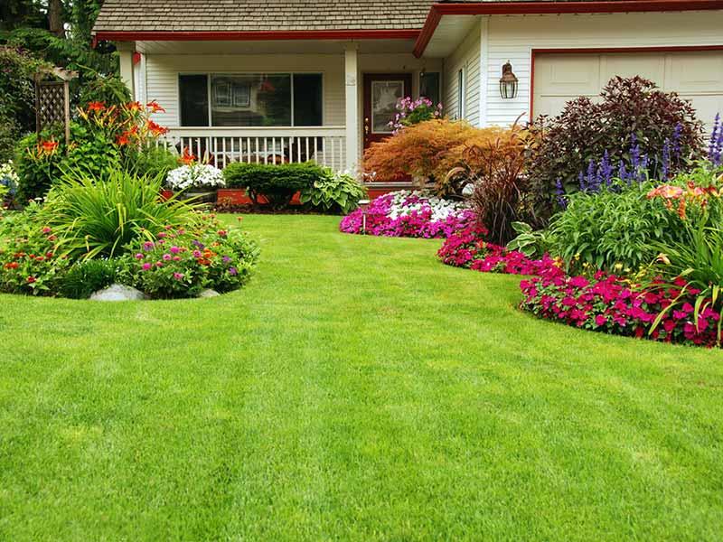 Essex Gardening